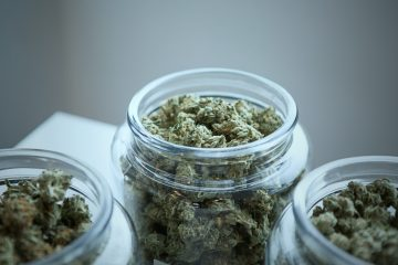 Scientific Reasons to Smoke Weed