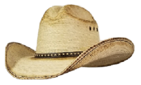 Country Cowboy Hats straw hat