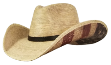 american flat hat