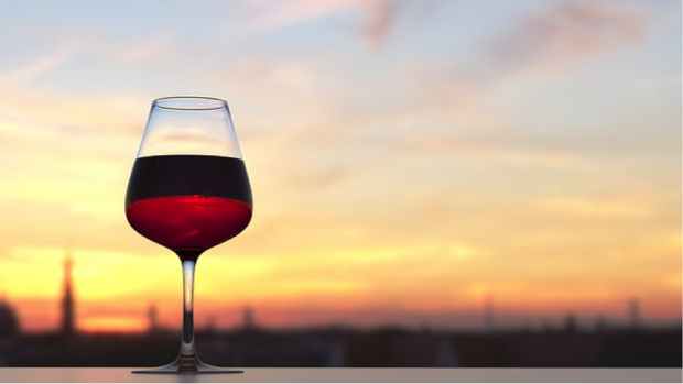 benefits of Red wine to achieve healthy skin and strong hair