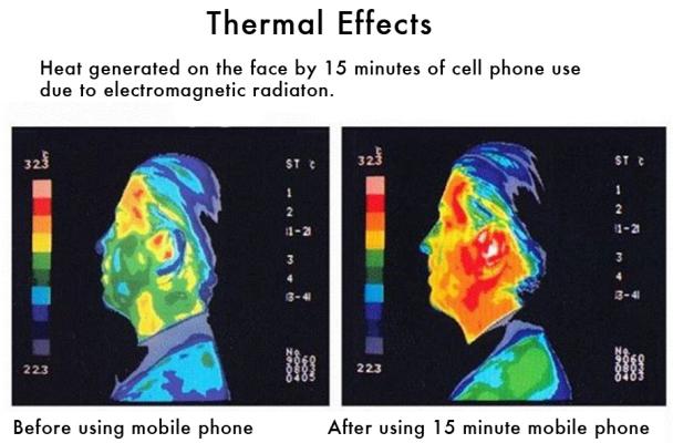 EMF radiation free house