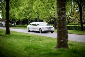rent a limousine