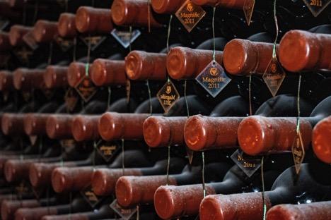 Wine Refrigerator Home