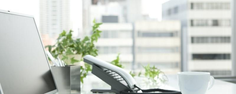 eco friendly office desk plants