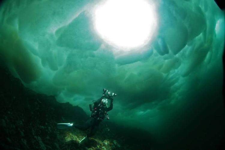 Ice Diving in Russia