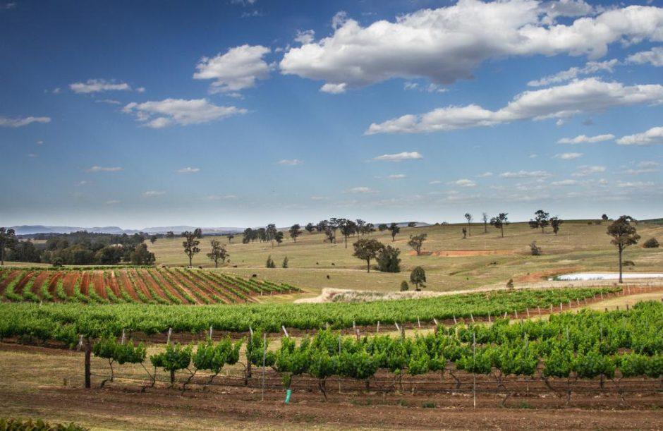 stunning wine regions