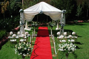 Artificial Grass Carpet vs. Red Carpet