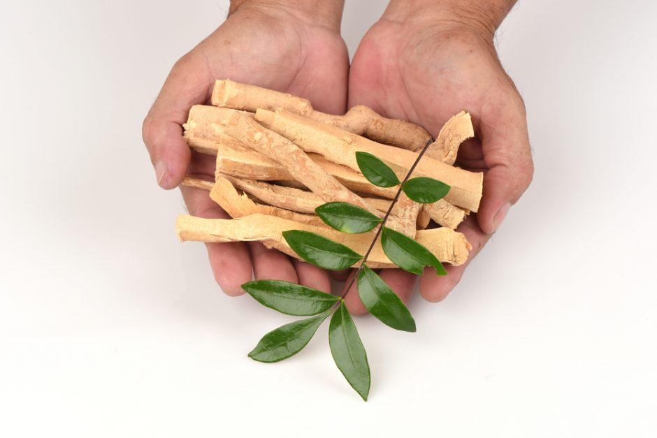 Benefits of Eurycoma longifolia plant