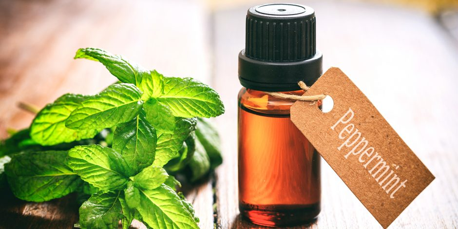 peppermint Natural Remedies to Chronic Pain