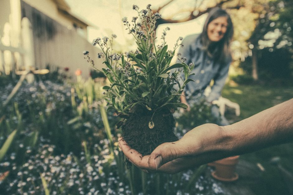why gardening good for your health