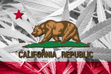 california state flag cannabis culture