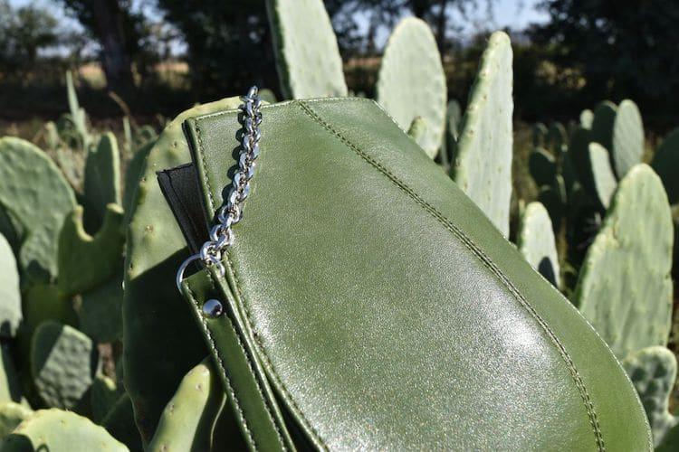 material of cactus