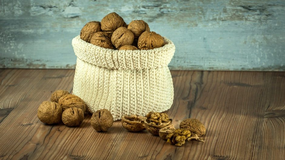 Crucial Foods for Human Health eat walnuts