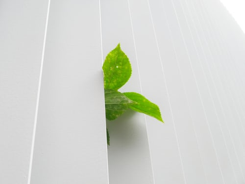 more eco friendly home