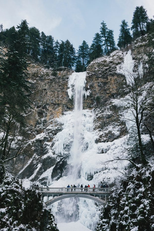 Why You Should Visit the PNW this Winter