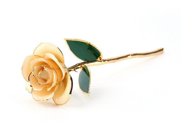 Least Known Ways of Identifying 24k Gold Dipped Roses