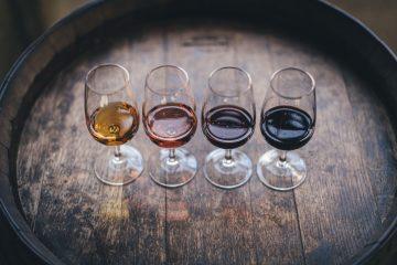 what is wine tasting
